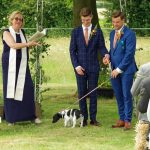Are dogs ok at my Wedding Ceremony?
